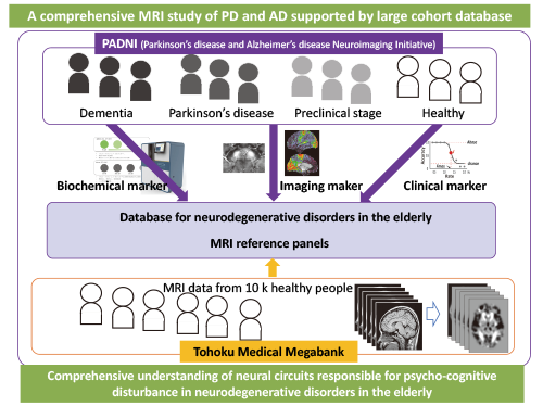 Parkinson's disease and Alzheimer's disease Neuroimaging Initiative (PADNI) supported by MRI reference panels based on community-based cohort data