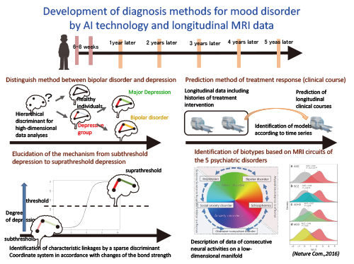 Elucidation of neural circuits of mood disorder in adults and related disorders based on longitudinal MRI data