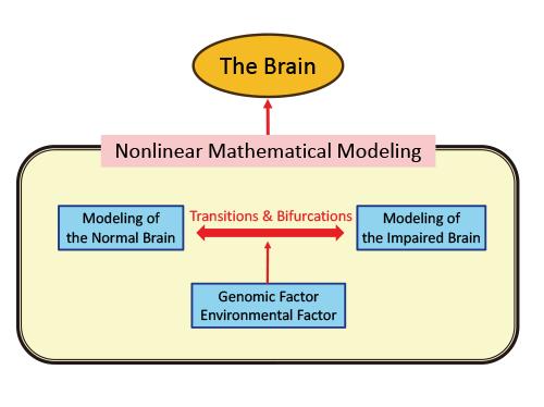 非線形動力学に基づく次世代AIと基盤技術に関する研究開発